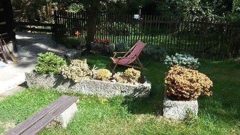 FOTKA - Zničená zahrada po parném létě