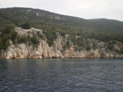 FOTKA - Zalesněná část ostrova