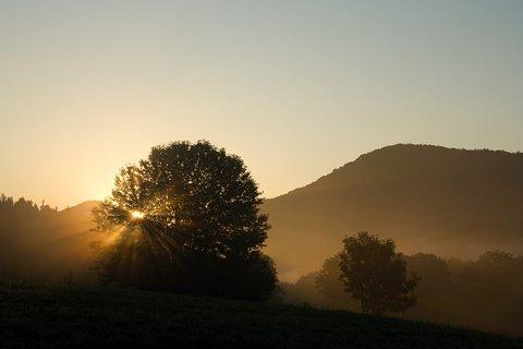 FOTKA - Za svítání