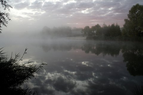 FOTKA - Ráno u Máriny
