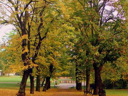 FOTKA - V parku,