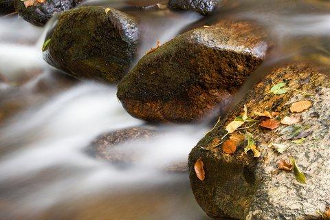 FOTKA - Kameny v proudu