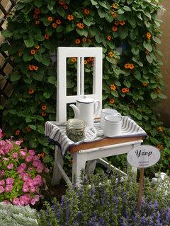 FOTKA - Bílá židle mezi kytkami