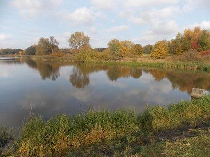 FOTKA - Krásně je u rybníku