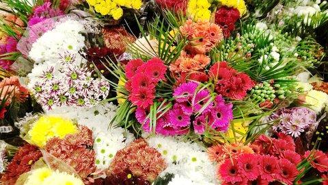 FOTKA - bohatý výběr květin