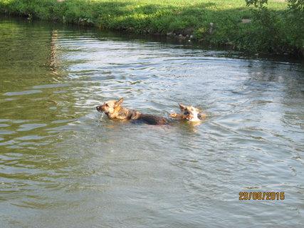 FOTKA - Už se nebojím plavat