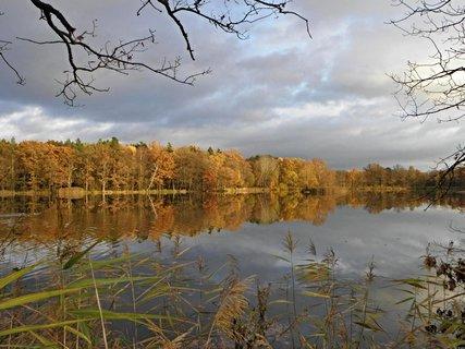 FOTKA - Podzimní...