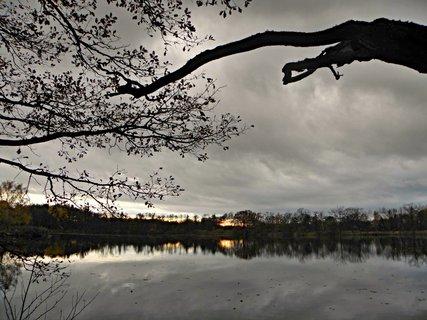 FOTKA - Ráno u rybníka...