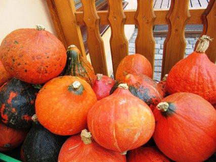 FOTKA - Dýně patří k podzimu