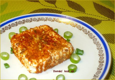 FOTKA - Ochucený kozí sýr