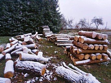FOTKA - Rozdělaná práce poprášená prvním sněhem