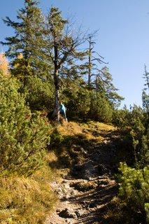 FOTKA - Výšlap k Peter-Wiechenthaler-Hütte - Pořád nahoru