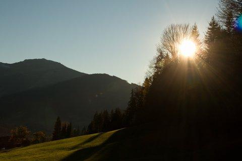FOTKA - Procházka ke kapličce Kaseregg - Slunce ve stromech