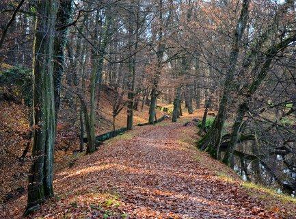 FOTKA - Zámecký park s arboretem o rozloze 42,69 ha se nachází v severozápadní části přírodního parku jižně od pozdně barokního heřmanoměsteckého zámku. Je veřejně přístupný.