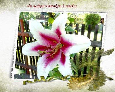 FOTKA - Dnes slaví svátek Dášenky!
