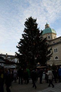 FOTKA - Adventní procházka po Salzburgu - Vánoční strom