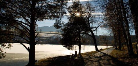 FOTKA - Jaro v prosinci na Ritzensee - Cesta u jezera