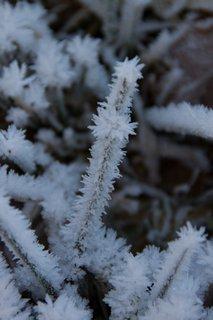 FOTKA - Jaro v prosinci na Ritzensee - Ledové krystaly