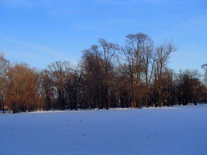 FOTKA - tieň pomaly padá aj na stromy