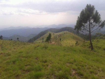 FOTKA - v peknej prírode na Sri Lanke