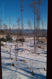 FOTKA - zimná príroda