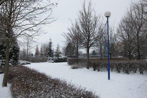 FOTKA - Konečně trochu sněhu