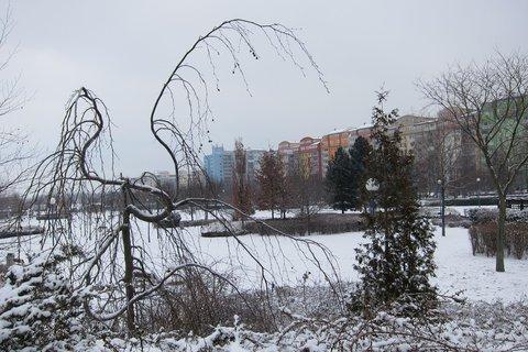 FOTKA - Park vypadá pěkně