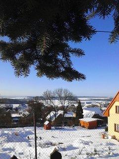 FOTKA - Střemy pod sněhem