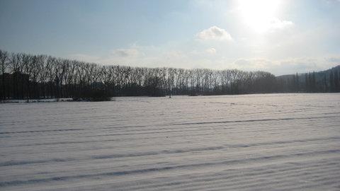 FOTKA - pěkný zimní den