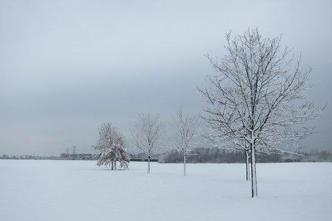 FOTKA - Bílej sníh, bílej sníh, bílej sníh, bílej sníh....la la la...