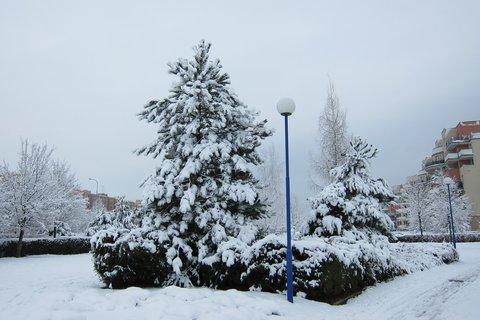 FOTKA - Když padá sníh je tak čisto ....lalala