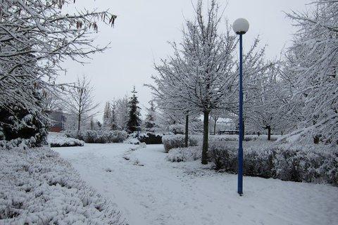 FOTKA - Máme sníh a máme mráz....lalala