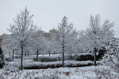 FOTKA - Bílý sníh létá nocí mrazivou....lalala
