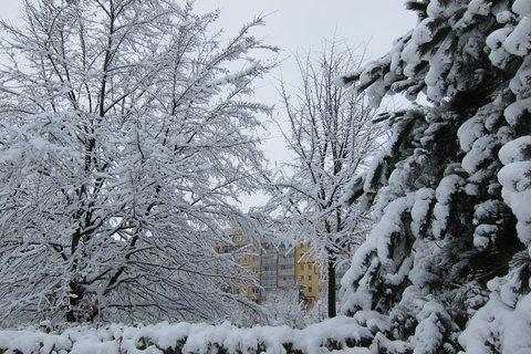 FOTKA - Když padá sníh toulám se venku....lalala