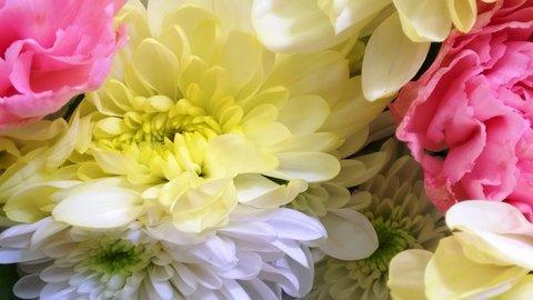 FOTKA - chryzantémy a karafiáty