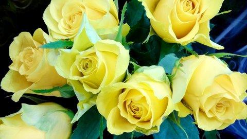 FOTKA - žlutá kytička pro kolegyni