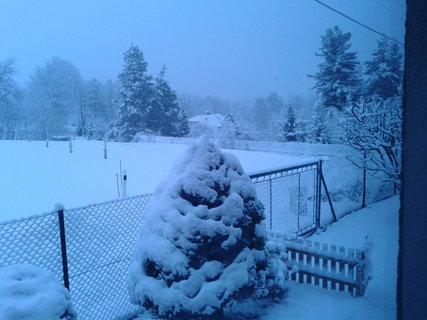 FOTKA - Zase sníh...