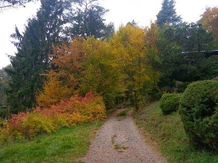 FOTKA - Podzim