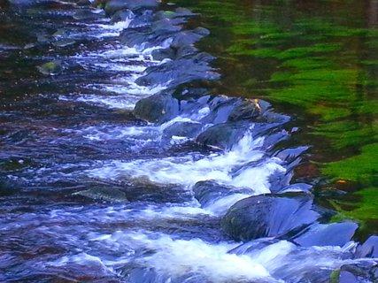 FOTKA - Řeka Svratka