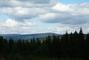 příroda v Orlických horách....