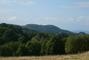 příroda v Orlických horách.)