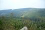 příroda v Orlických horách.))