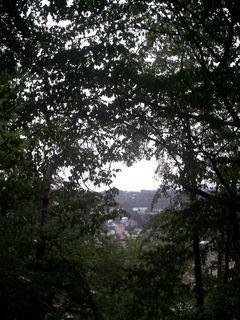 FOTKA -  Boskovice za stromy