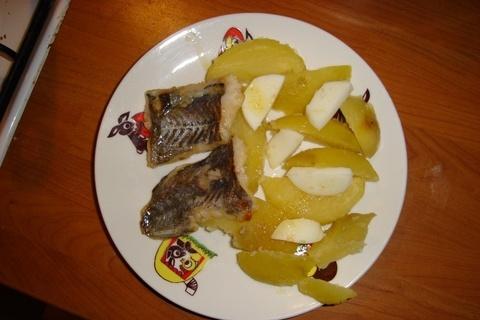 FOTKA - mňamka rybička