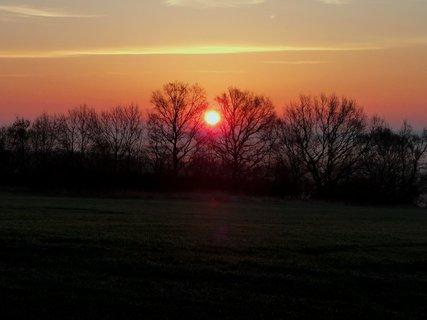 FOTKA - Východ slunce mezi stromy