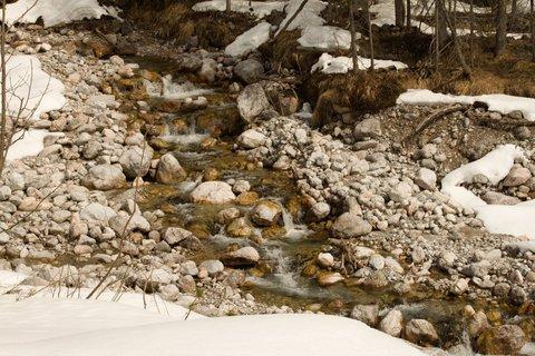 FOTKA - Ještě zimní procházka k Triefen - Potůček