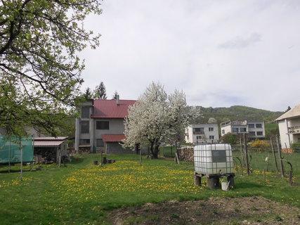 FOTKA - jar na záhradke-v apríli