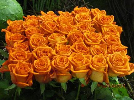 FOTKA - Kytice oranžových růží