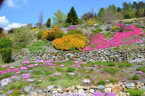 FOTKA - Arboretum Paseka