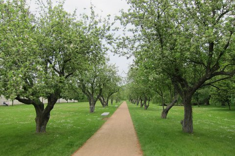 FOTKA - Ctěnice - procházka zámeckým parkem